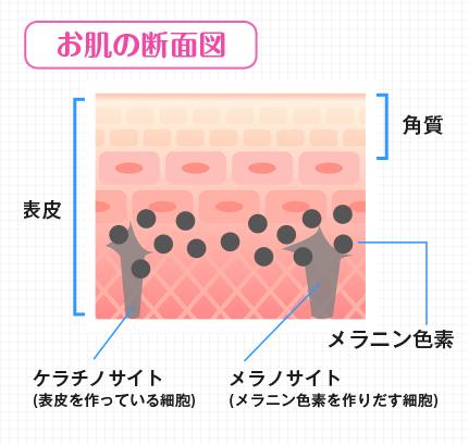 毎日たった1分で、乳輪の色を綺麗なピンクにする方法(ちくびをピンクにする方法)とは?ホワイトラグジュアリーの口コミ掲載♪