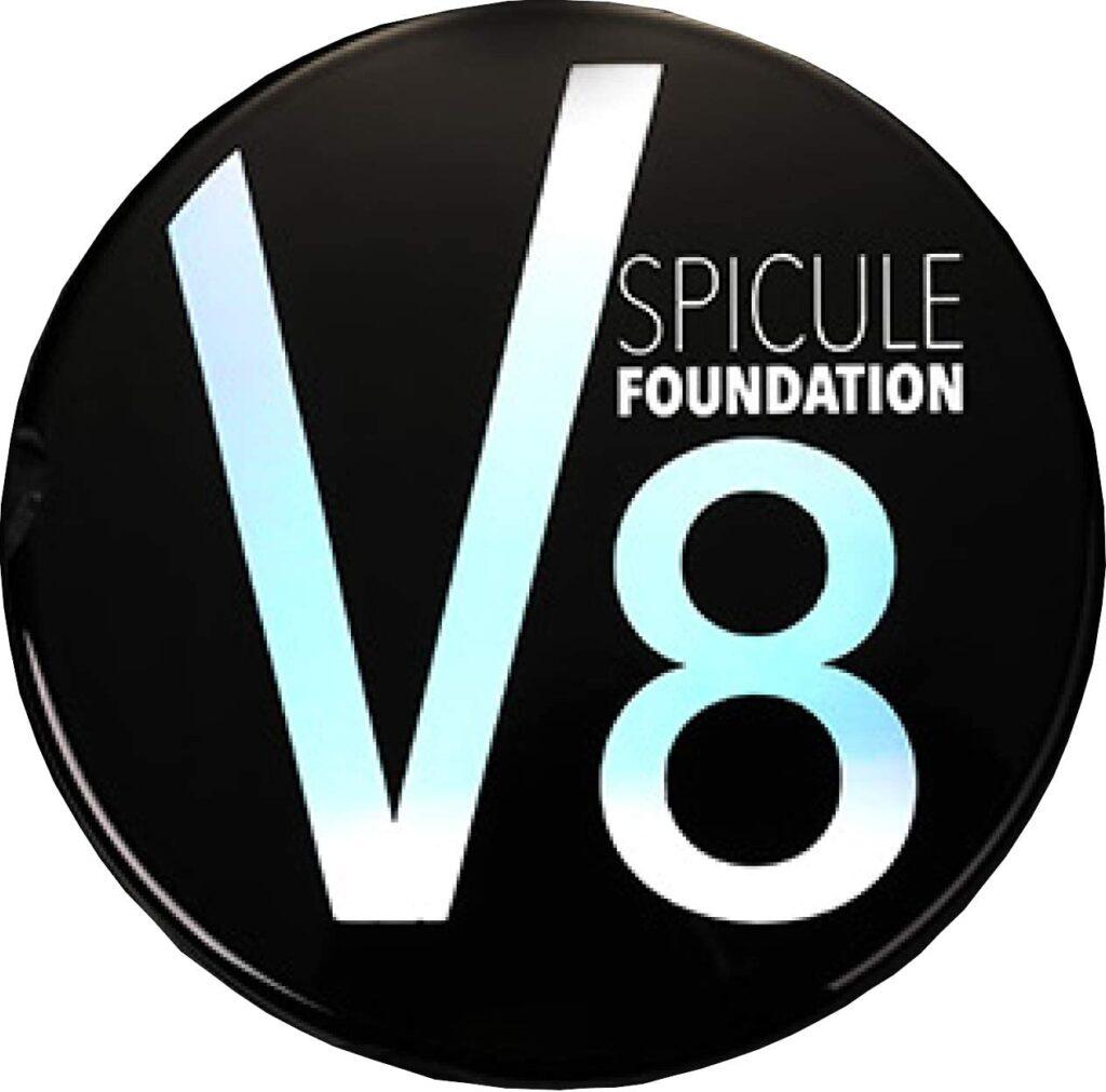 V8 スピキュールファンデーションの口コミって?天然微細針スピキュール胎児臍帯血細胞培養液って?